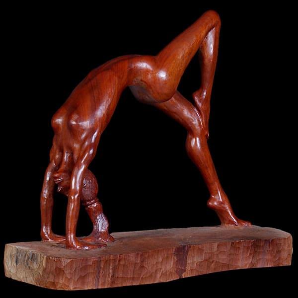 Gymnast by Nader G. Vakili